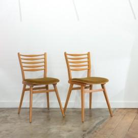 Paire de chaises bois/velours des années 1950