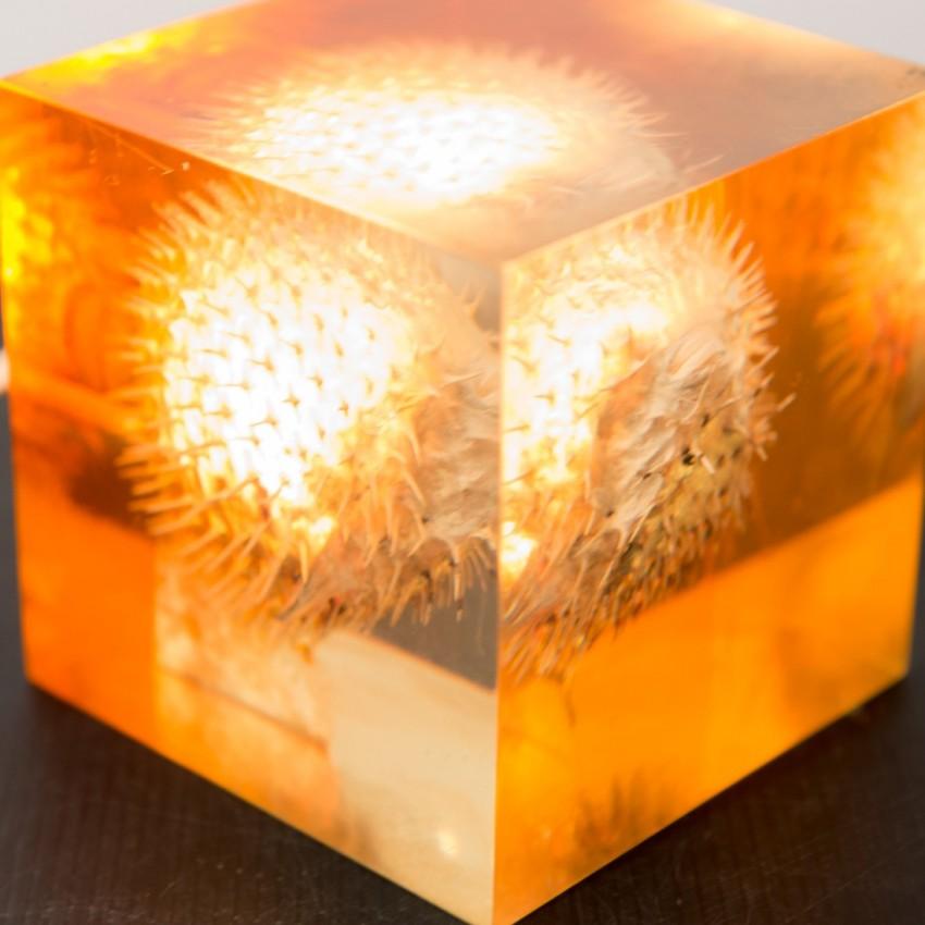 Lampe inclusion résine Diodon