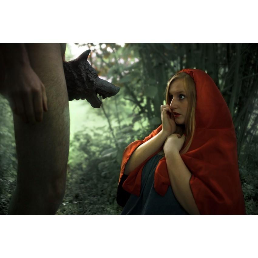 Matthieu Soudet - Elle a vu le loup